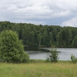 ИЖС от 18 соток до 10 Га у большой воды Вазузского водохр. 8