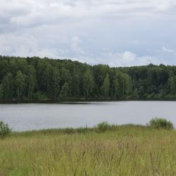 ИЖС от 18 соток до 10 Га у большой воды Вазузского водохр. 4