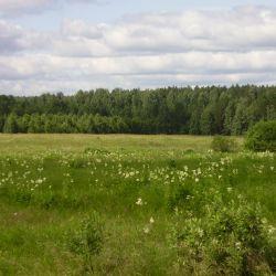 Продам земельный участок в Чкаловском районе Екатеринбурга 1