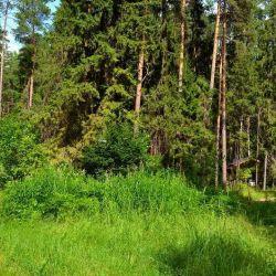 Продажа земельного участка по мини гостиницу на берегу Горьковского водохранилища 4