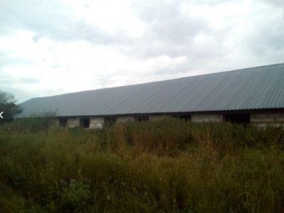 Производственное помещение, 990 м²