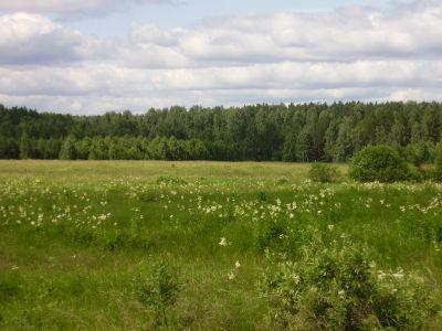 Продам земельный участок в Чкаловском районе Екатеринбурга