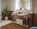 Франшиза магазина акриловых ванн и сантехники AESSEL 2