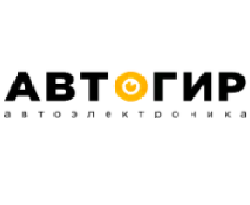 Франшиза магазина автомобильной электроники АВТОГИР 1