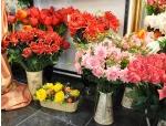 Франшиза магазина искусственных цветов из силикона Terra Fiori