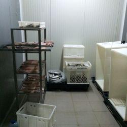 Доля в Действующей фабрики переработки рыбы Черногория 5