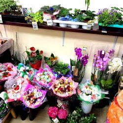 Цветочный Магазин 24 часа. Низкая аренда 3