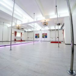 Сеть студий танцев на шесте Anix Dance 14