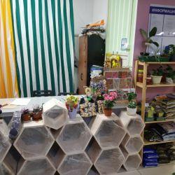 Магазин цветов с доходом 150 000 рублей 2