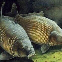Продается действующее производство рыболовных товаров 2