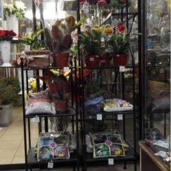 Цветочный магазин 7