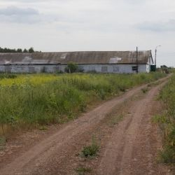 Ферма инкубаторий 5