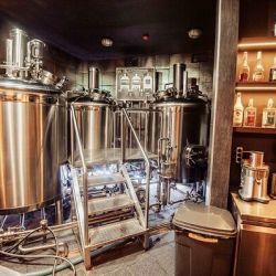 Доходная частная пивоварня в Истринском районе 1