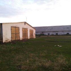 Действующая ферма 3