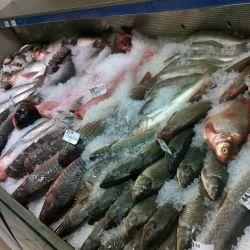 Рыбная точка на рынке 1