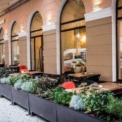Два ресторана в Праге  4