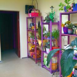 магазин цветов 1