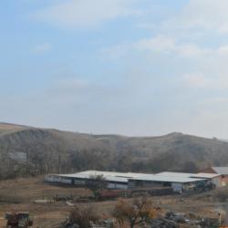 Действующее Крестьянско-Фермерское хозяйство (кфх)