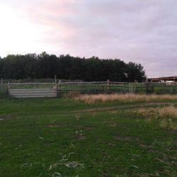 Действующая ферма 2
