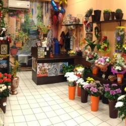Салон Цветов 24 2