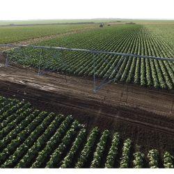 Сельскохозяйственное предприятие 3