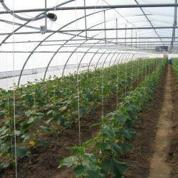 Сельхозпредприятие