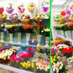 Прибыльный цветочный бизнес — метро Серпуховская 1