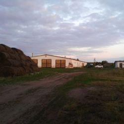 Действующая ферма