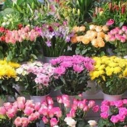 Отдел Цветы в Торговом центре