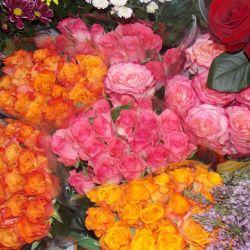 Цветочный бизнес с помещением в собственности 8