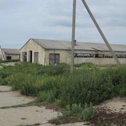 Ферма в Рязанской обл