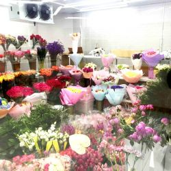 Прибыльный салон цветов по цене активов 4