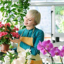 Продам магазин цветов. Стабильность. От 50 тысяч прибыли. 8