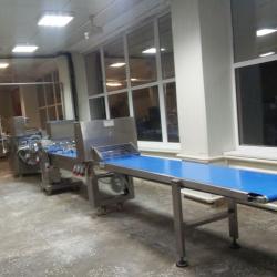 Производство замороженных полуфабрикатов из теста 1