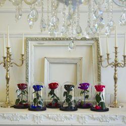 Розы в колбе. Трендовый цветочный бизнес 1