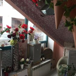 Салон цветов. 8 лет в одних руках 2