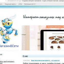 Конструктор интернет-магазинов 1