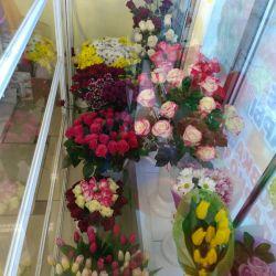 Цветочный павильон,воздушные шары! 3