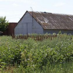 Ферма инкубаторий 3