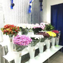 Магазин цветов. Работает 3 года. Активы 590.000 р. 3