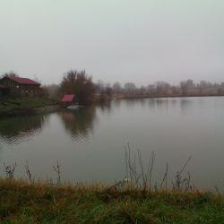 Ферма + Платная рыбалка
