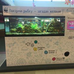 Аппараты аквариумы