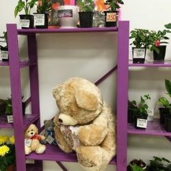 Цветочный салон 4