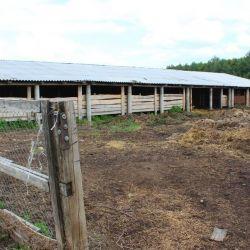 Фермерское хозяйство в Рязанской области 2
