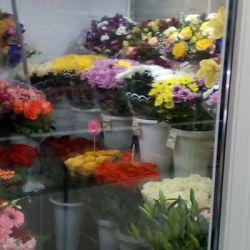 Доходный цветочный салон. м. Багратионовская 1