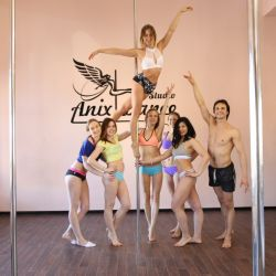 Сеть студий танцев на шесте Anix Dance 8