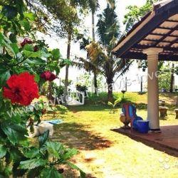 Отель на Шри-Ланке на берегу Индийского океана 3