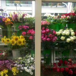 Готовый цветочный бизнес 6