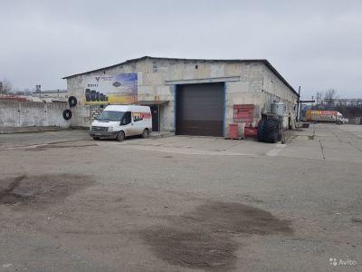 Бизнес по оптовой и розничной продаже авто и с/х шин