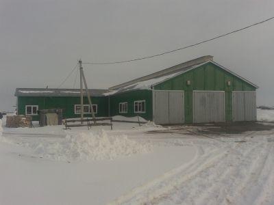 Действующая мини ферма КРС молоко